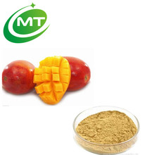 Wild 10:1 African Mango Extract Powder/Seed Extract Powder