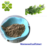 Herbal extract type Folium Artemisiae Argyi P.E Wormwood Leaf Extract