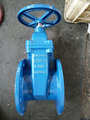 PN16 Resilient Seated Gate Valves