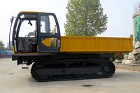 Fruit tree truck/small caterpillar vehicles/transport price