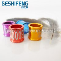Low price top level more colors for choice ring birds