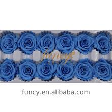 Funcy Brand 4 cm Blue Color Preserved Forever Immortal Real Roses
