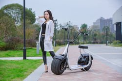 2016 new arrival cheap adult motorcycle for sale mini dirt motorcycle electric scooter 800w