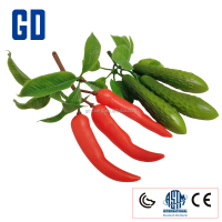 GD- Vegetables - snake melon, eggplant, green peppers, corn, garlic, mushrooms, ginger, onion, pepper, cucumber potatoes, bamboo