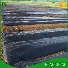 wholesale black plastic mulch / PE silver/black mulch film for vegetable