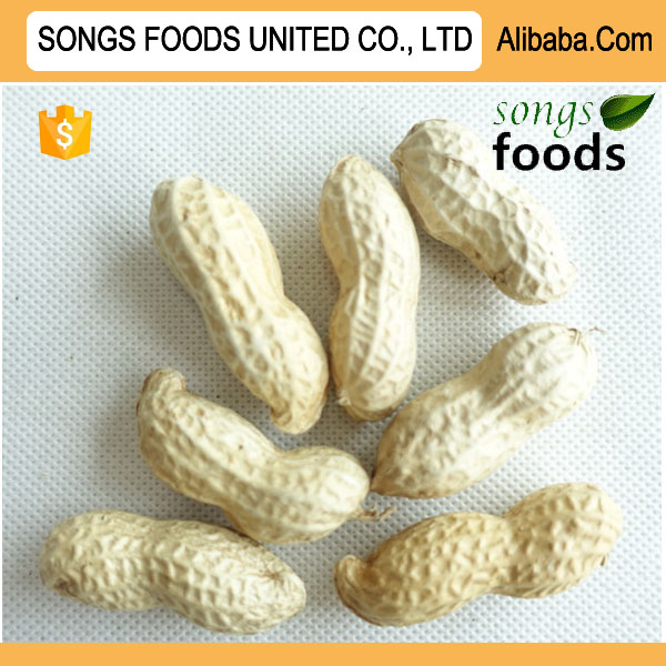 Groundnut Production,Chinese Peanut Inshells At Best Price