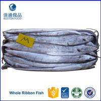 High Quality Seafood Whole Frozen Ribbon Fish 300-500g Hairtal Fish Price