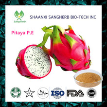 New product dragon fruit plant extract/dragon fruit nutrition from China famous supplier