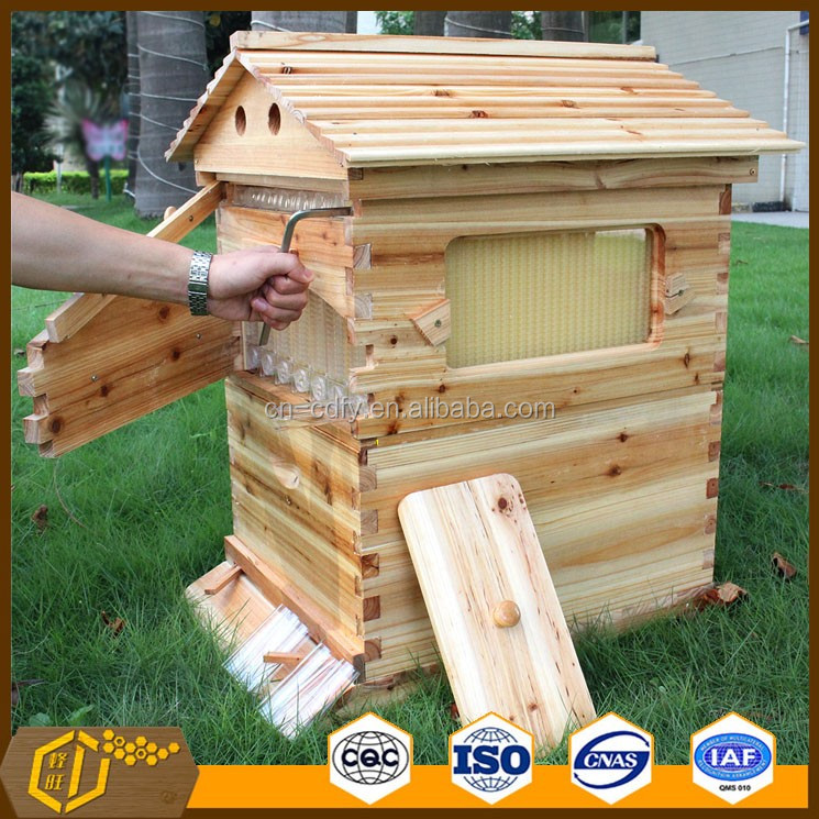 Beekeeping Atustralia 7 pieces flow frames auto honey flow hive