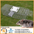 Mouse Cage Animal Foldable Trap for Possum Cat Rabbit Woodchucks Hare