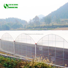 UV Stable Polyethylene Woven Fabric film Greenhouse /Tunnel Greenhouse Cover