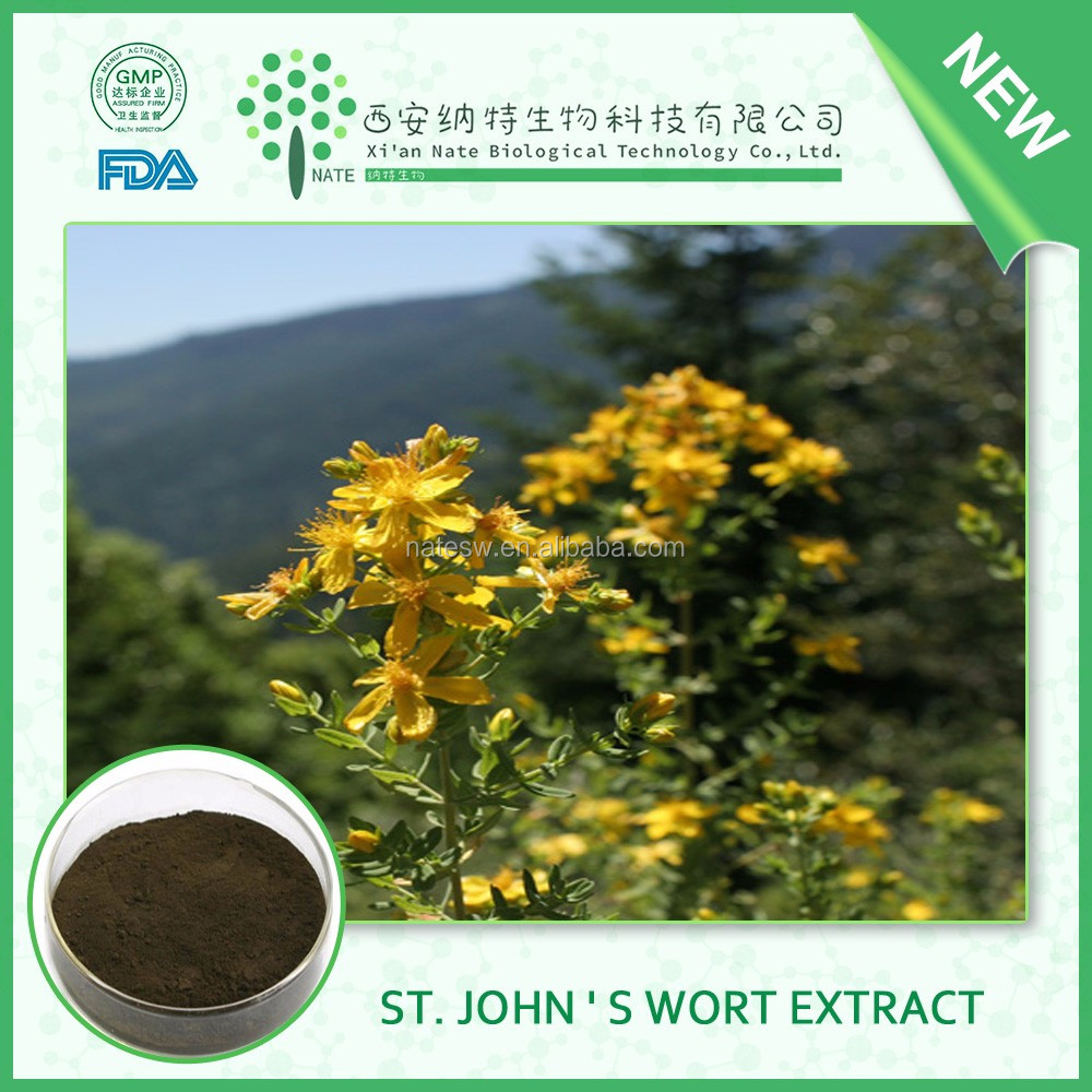 New batch pure natural St. John ' s Wort Extract 0.3% hypericin with free sample