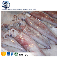 Nutritious Seafood Giant Frozen Squid For