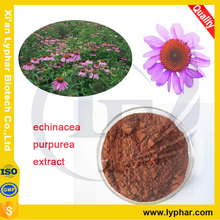 100% Pure and Natural Echinacea Purpurea Extract