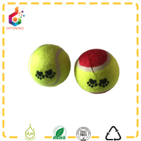 custom printed class C pet tennis ball with dog paw