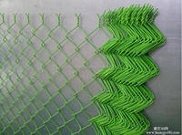 hot galvanized/PVC coated garden fence river bank netting chain link fence