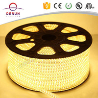 Hot sell ip67 220v led strip led 50 mts with CE ROHS