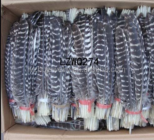 Natural Barred Mottled Turkey Wing Quill feathers LZWQ274