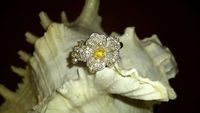 Tanishi Diamond Ring