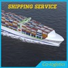 Gym Equipment Of Shipping Companies From