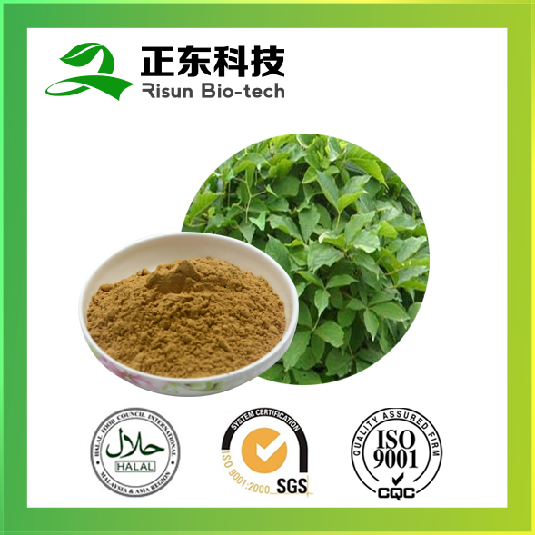 Plastic Container Packaging Siberian Ginseng Extract 0.8%Eleutheroside Powder for Tabletting