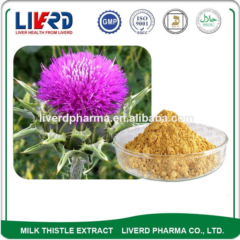 Plant Extracts & Botanicals Hot Selling Silymarin Reasonable Price