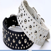 dog design germany dog collar & stainless steel dog collars & electronic dog collar
