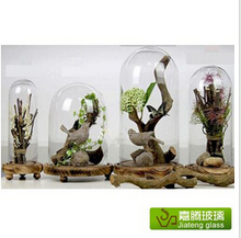 Customize Handblown High Quality Mini Clear Glass Display Dome