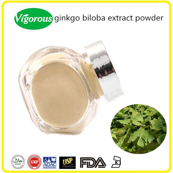 GMP factory supply organic ginkgo biloba extract powder/ginkgo biloba leaf extract
