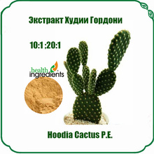 lose weight cactus extract powder