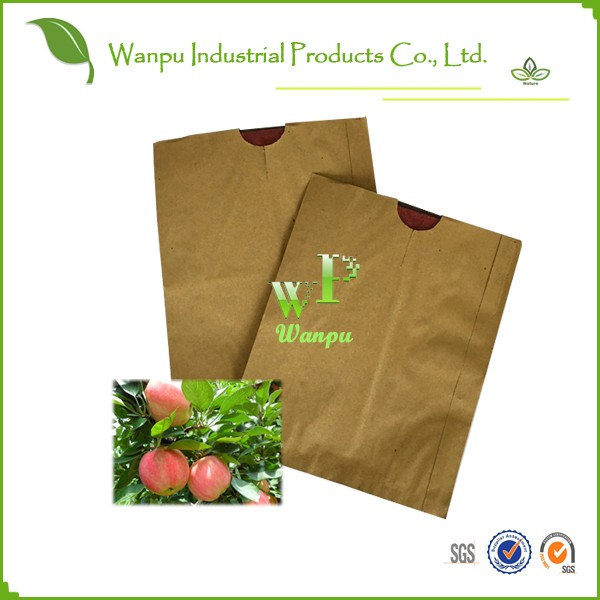 apple paper bag, apple protection bag