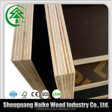 15mm 18mm poplar/pine/eucalyptus/hardwood core film faced plywood/lumber low prices
