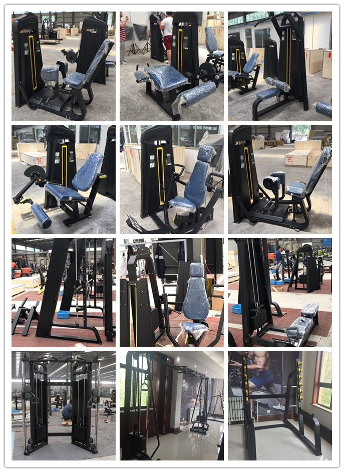 Professional pin load machine/gym/fitness equipment/Multi Hip ZH-1021