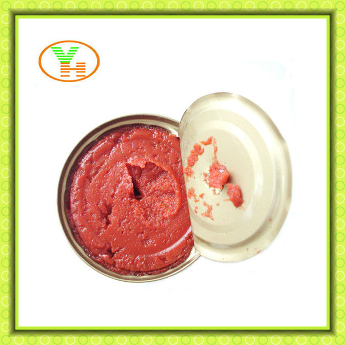 very hot sell China canned tomato puree for middle east,fruit and vegetables export