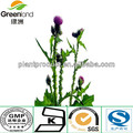 HIGH WATER SOLUBILITY MILK THISTLE