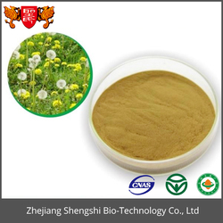 Free Sample Herbal Extract Dandelion Root Extract Powder