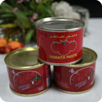 canned broad bean 397g