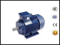 three phase induction electric motor