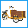 Family Use Electric Assist Pedal Cargo Bike Tricycle