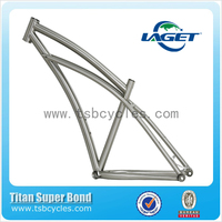 Hot sale China OEM titanium bike frame for mountain use TSB-RAM1601