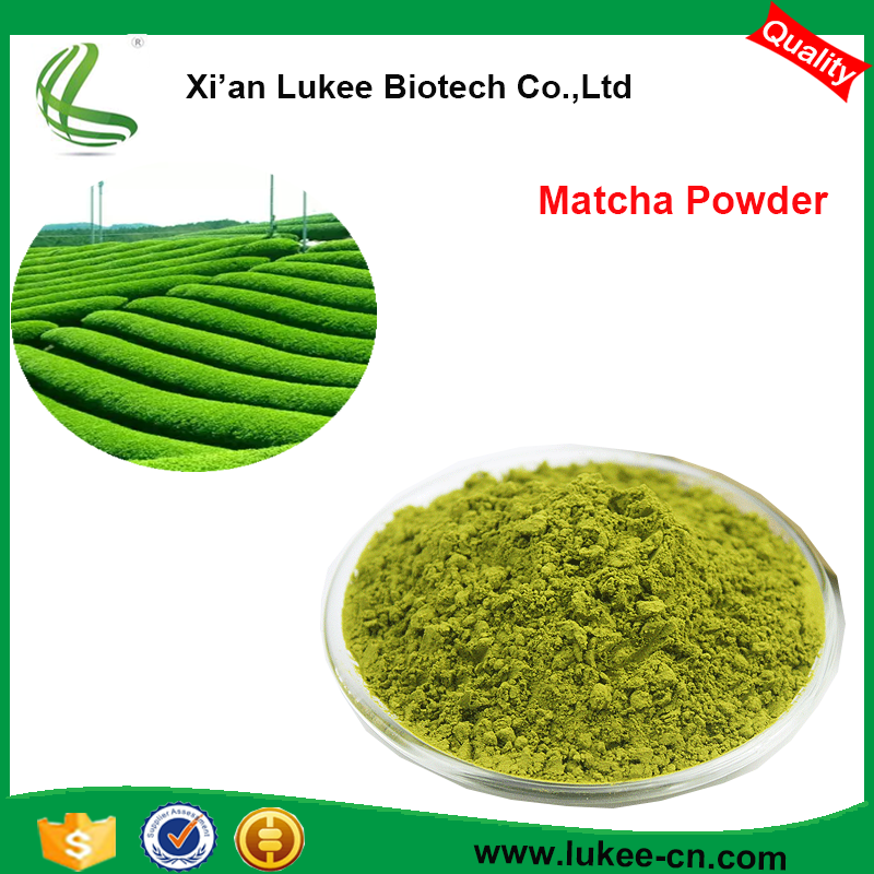 High purity extraction free sample providable 45% 80% 98% Polyphenol 80% Catechins organic matcha green tea powder