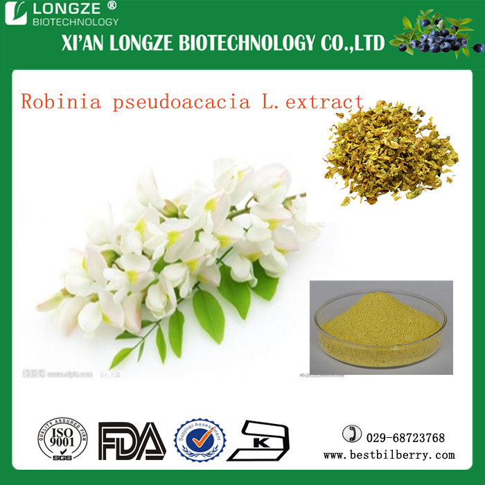 Free Sample Herbal Extract 95%~98% Acacetin/Robinin Robinia Pseudoacacia Powder / Styphnolobium japonicum Extract