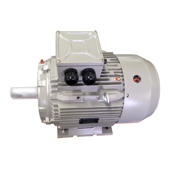 IEC Standard Small 3 Phase Electric Motor