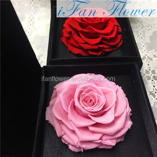 High Quality Fresh one red rose preserved long last flowers stabilized
