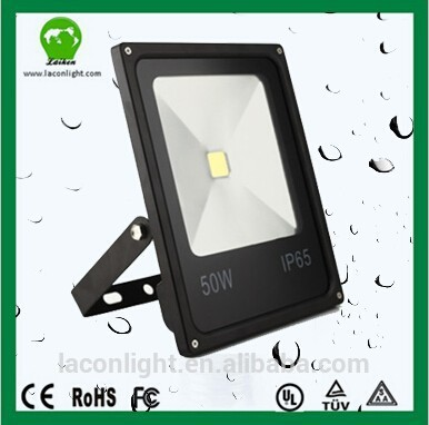 Outdoor Led Floodlight Silver/black/white Color Housing 10w Led Projector Lamp IP67 driver