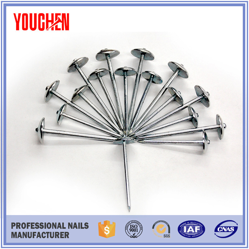 Galvanized mushroom roofing nails products/ construction roofing nails made in China