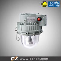 High Quality From25W to 250W Explosion-Proof Light fitting