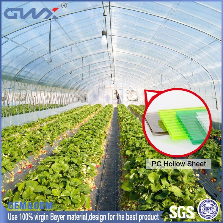 ISO9001:2008 SGS Good Light Transmission Clear Polycarbonate Hollow Sheet for Greenhouse