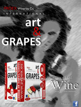 ART & GRAPES Red Dry Wine 11.0% bag in box BIB 6x3l