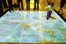 Magic Floor Interactive Floor Projection System for Kids Games/Education